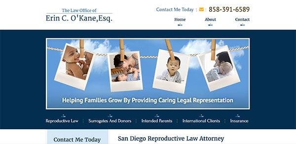 Erin O'Kane Law Attorney
